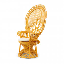 Greenport Peacock Chair Yellow / Rivièra Maison